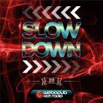 """LE """"SLOWDOWN RIDDM"""" A VU LE JOUR 9"""