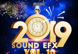 DJ TAY WSG - SOUND EFX PACK VOL. 10 (EFX 2019) 3