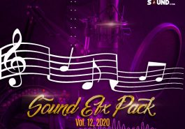 DJ SHOL - SOUND EFX PACK VOL. 12 (EFX 2020) 6